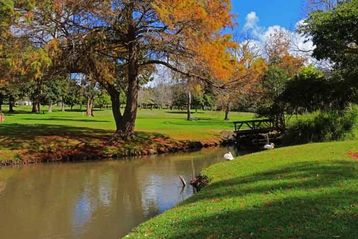 wynberg park braai spots