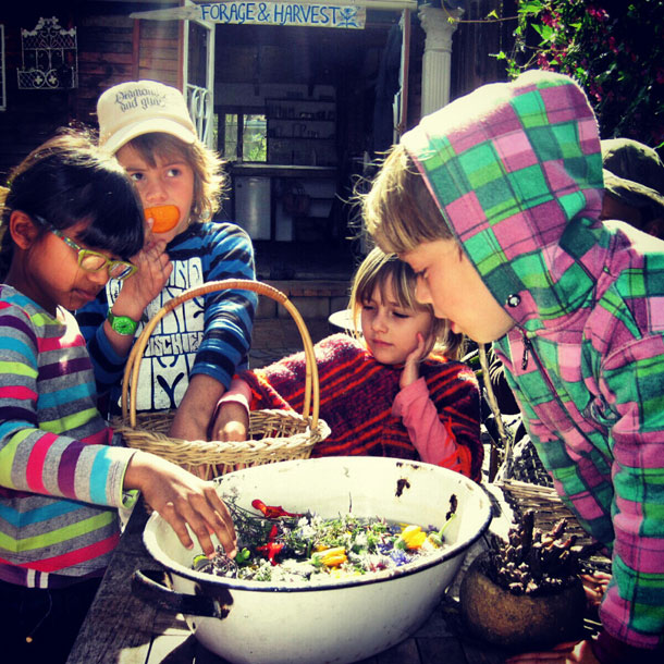 Kids-forage-and-harvest